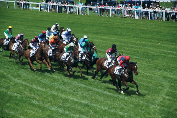 Point-to-Point Racing with the Fairfax Hunt