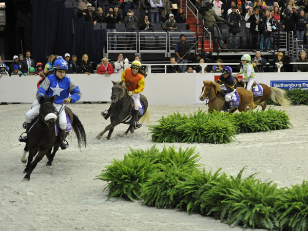 The Shetland Pony Races at WIHS