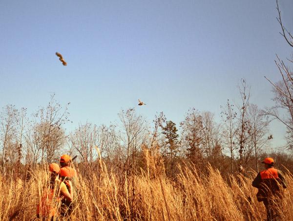 Rasawek Hunting Preserve