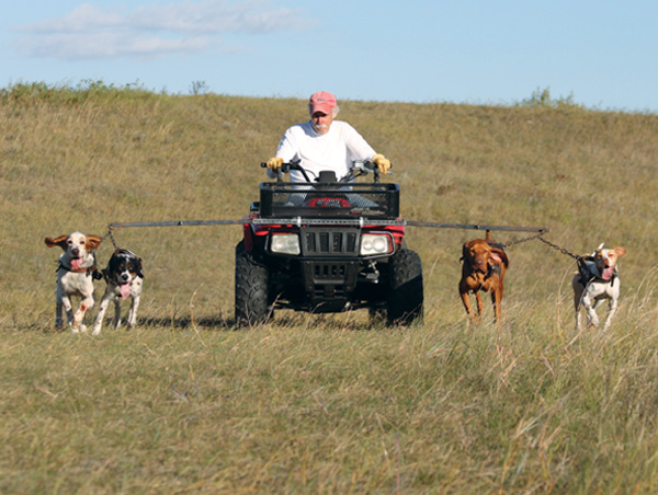 Pomfret conditions dogs from an ATV using roading harnesses.