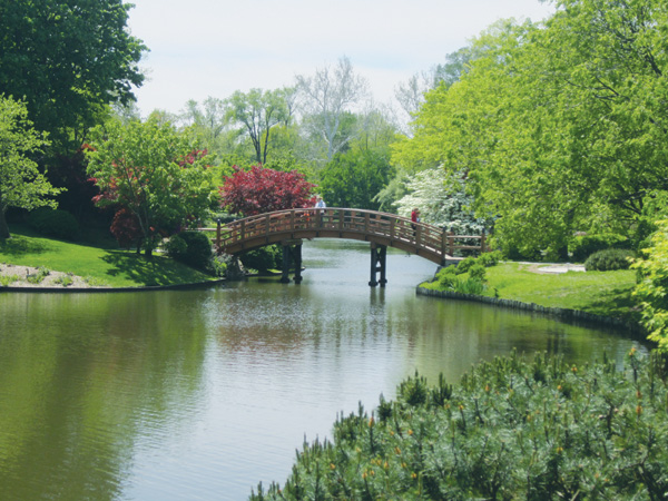 The Japanese Garden and adjacent lake at the Missouri Botanical Garden's is one of the finest Asian gardens in North America.