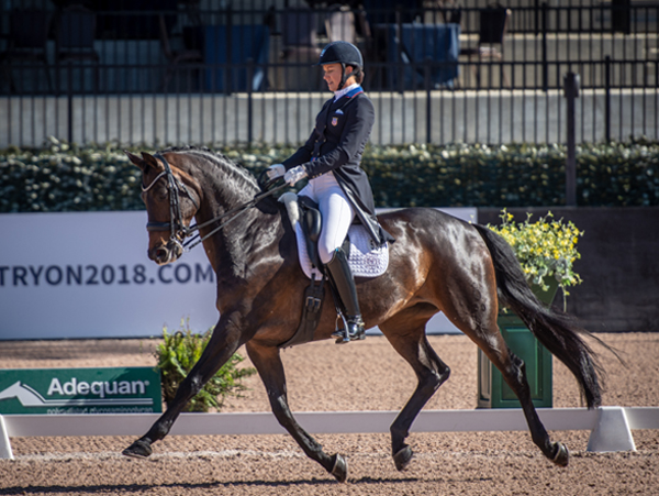 Soon, horses and riders from more than 50 countries will descend upon Tryon, North Carolina … the arrival of the FEI World Equestrian Games (WEG).